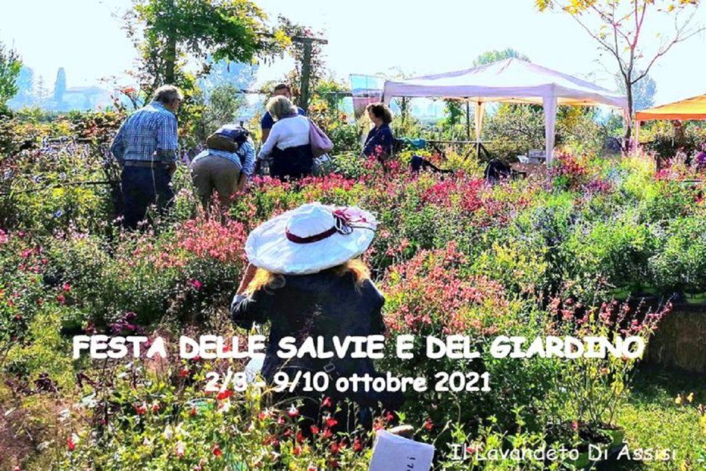 Festa delle salvie e del Giardino al Lavandeto di Assisi